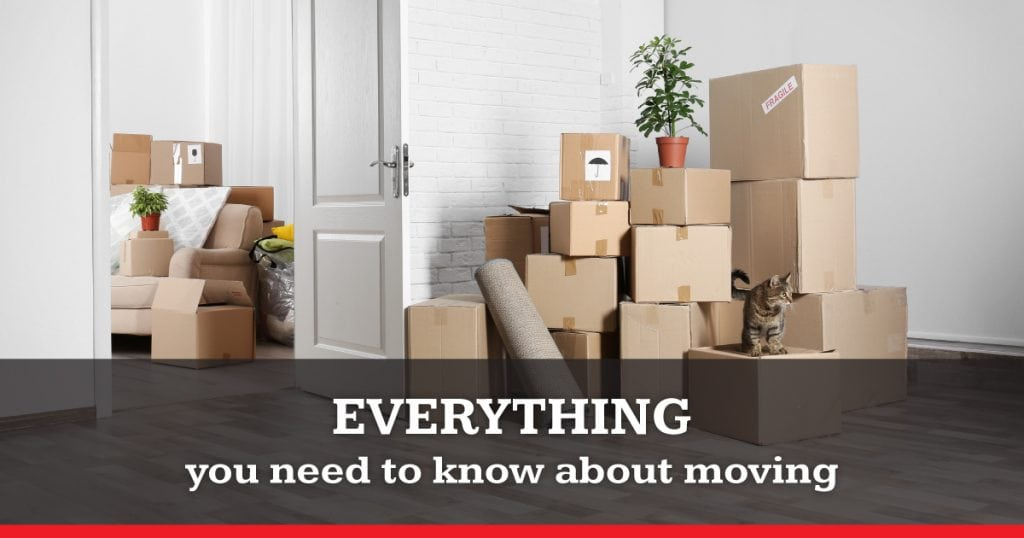Everything You Need To Know About Moving